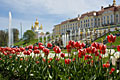 Peterhof Palace - photo stock