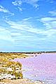 Australia - landscapes - photos - Pink Lake