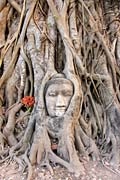 Ayutthaya - photo gallery