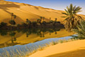 Egypt - landscapes - photo stock - oasis - Libyan Desert