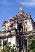 Thatbyinnyu Phaya Bagan - image gallery