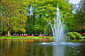 Keukenhof -  Garden of Europe - photography