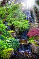 Keukenhof -  Garden of Europe - photo gallery
