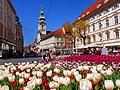 Graz -  Austria  - pictures - Old Town