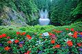 Photos - Butchart Gardens in Canada