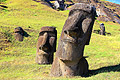 Moai, statues made ​​of volcanic rocks of Easter Island - photo travels
