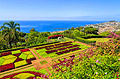 Botanical garden in Funchal, Madeira  - photos