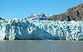 Glacier Bay, Alaska  - pictures