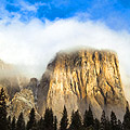 Holiday pictures - Yosemite National Park -  El Capitan