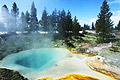 Yellowstone National Park - photos