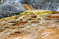 Mammoth hot springs in Holiday pictures - Yellowstone National Park