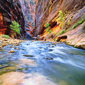 The Virgin River Narrows in Zion National Park - photo travels