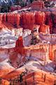 Onze reizen - Bryce Canyon National Park