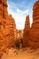 Bryce Canyon National Park - bankfoto's