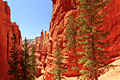 Bryce Canyon National Park - photo gallery