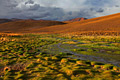 Altiplano (Bolivian Plateau) - travels