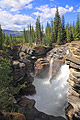 Athabasca Falls - our tours - Jasper National Park