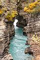 Our tours - Banff National Park