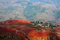 Red earth - terraces Dongchuan - photos