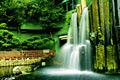 Nan Lian Garden  - pictures