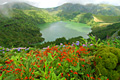 Faial Island (Azores) - photo travels