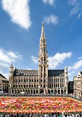 Brussels  - pictures
