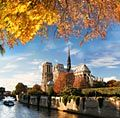 Notre Dame Cathedral in Paris  - pictures