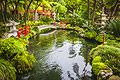 Holiday pictures - Botanical garden in Funchal, Madeira